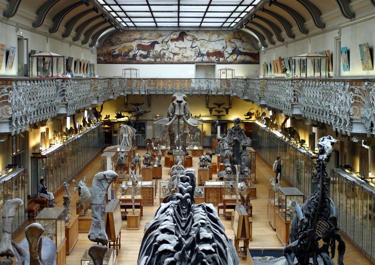 Muséum Histoires Naturelles de Paris